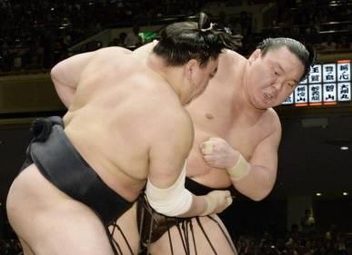 sp-sumo-a-20160522-870x632
