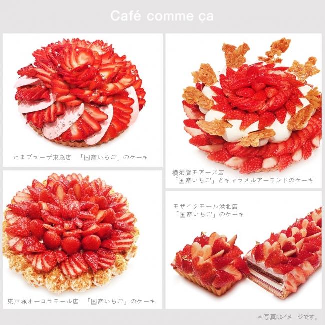 Strawberry Day 3