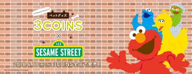 3 coins sesame